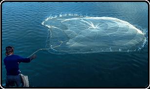 Кастинговая рыболовная сеть - простой принцип использования