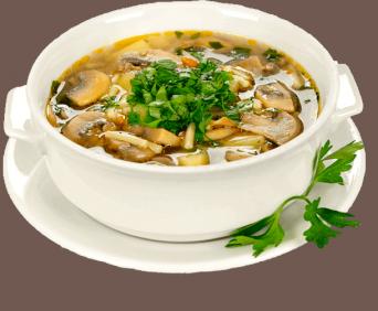 суп из вешенки, выращенной дома